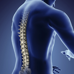 Spinal Cord Injury Accident Attorney Sacramento